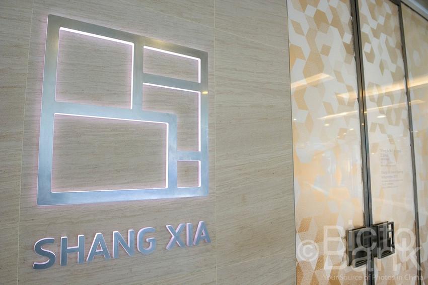 Shangxia-01 (1)