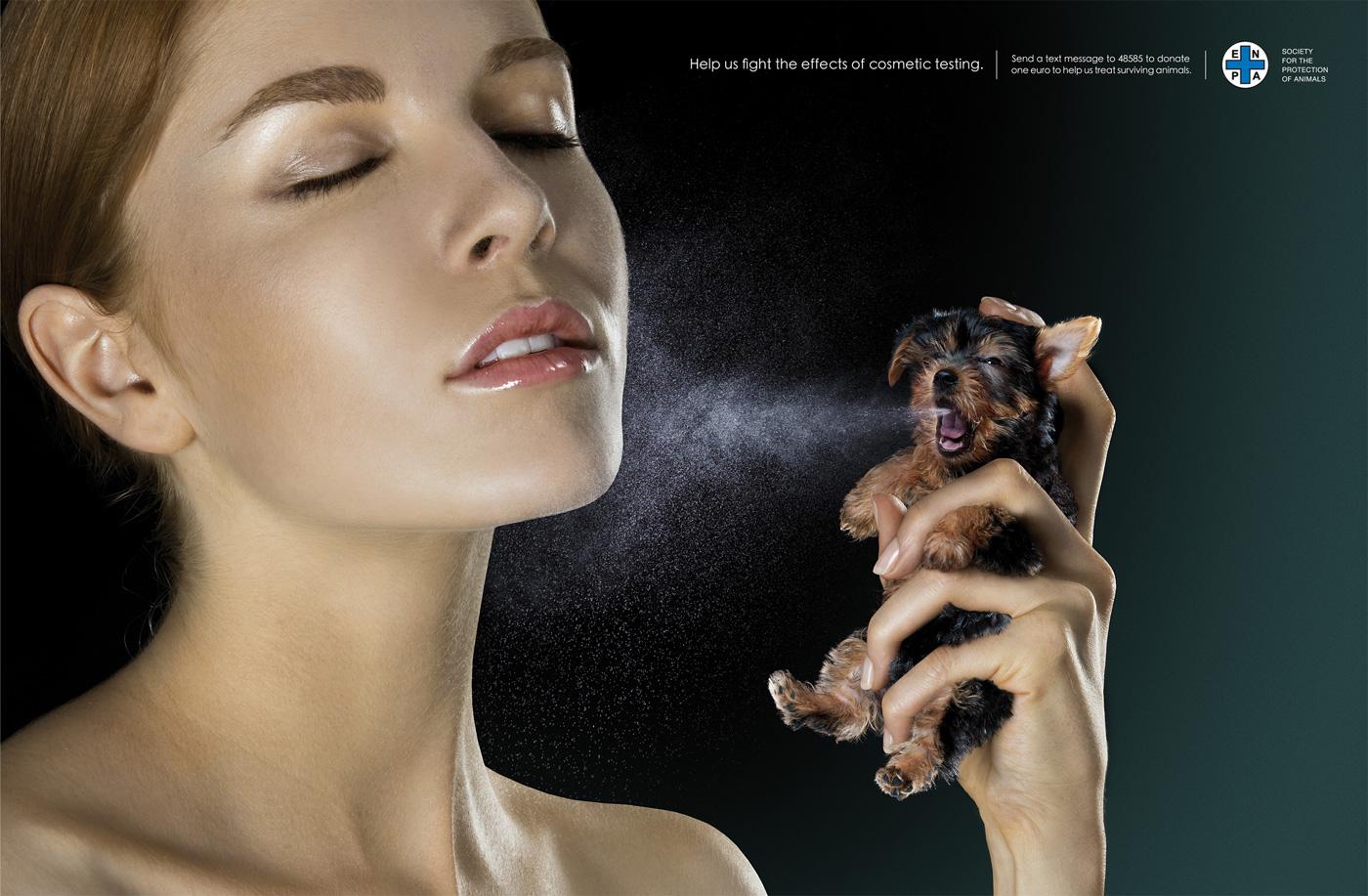 欧盟全面禁止化妆品动物测试