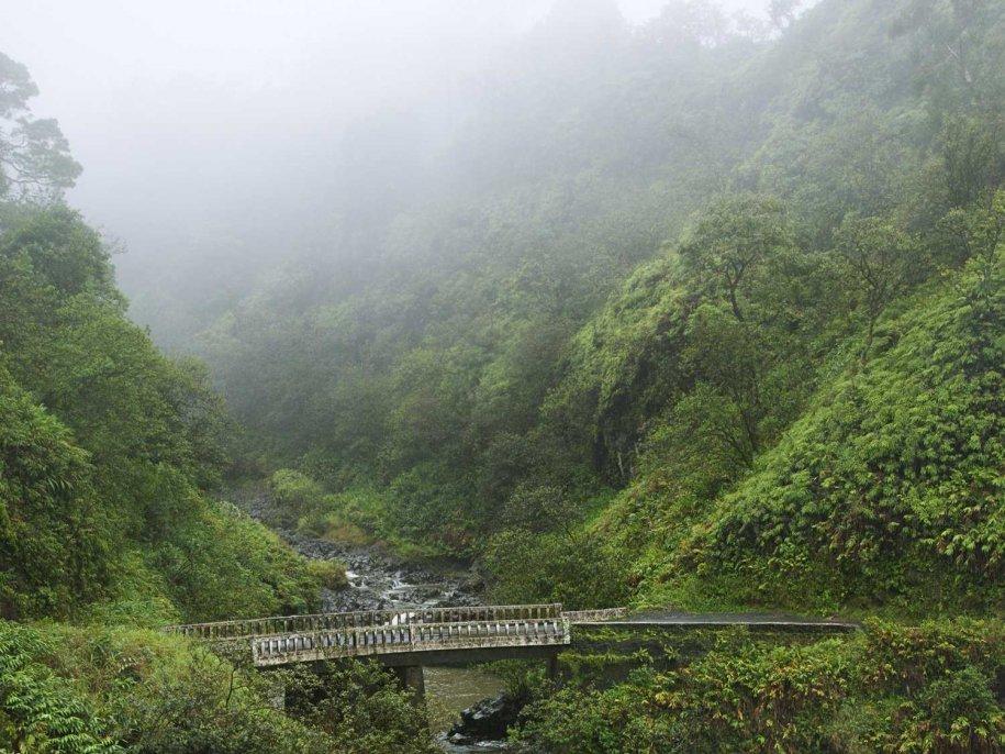 hana-highway-hawaii