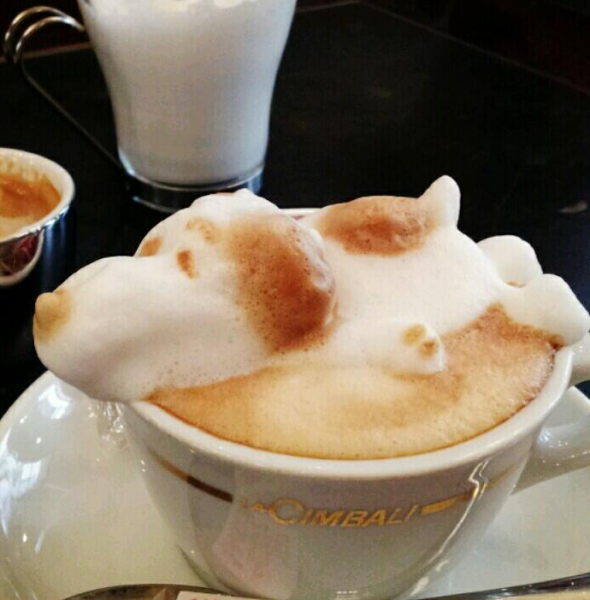 he-excels-in-3d-latte-art-where-he-uses-the-foam-to-create-his-designs