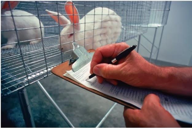 中国向放弃化妆品动物测试迈出第一步