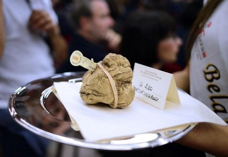 中国买家以三倍于黄金的价格拍走意大利白色松露