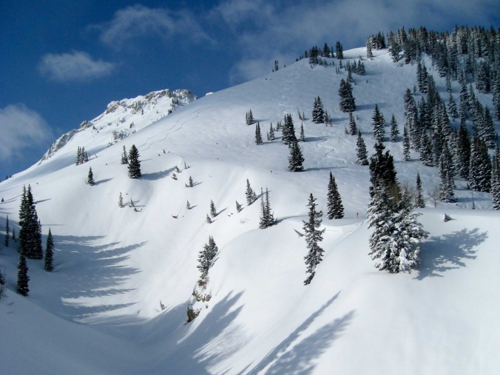 slice-through-the-powder-at-utahs-alta-ski-area-which-gets-an-average-annual-snowfall-of-560-inches