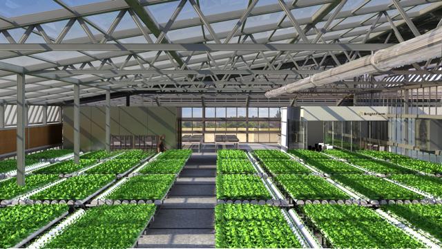 城市屋顶菜园 BrightFarms 获得490万美元融资