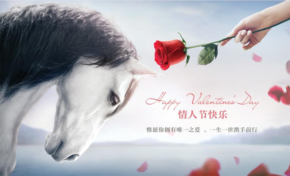 玫瑰凶猛-roseonly 情人节数据曝光,1年增长100倍