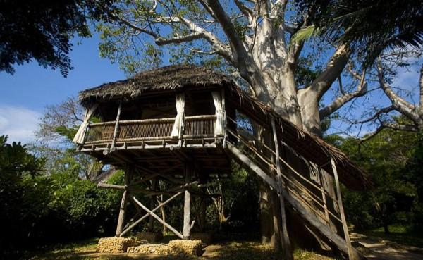 2014度全球十大生态酒店