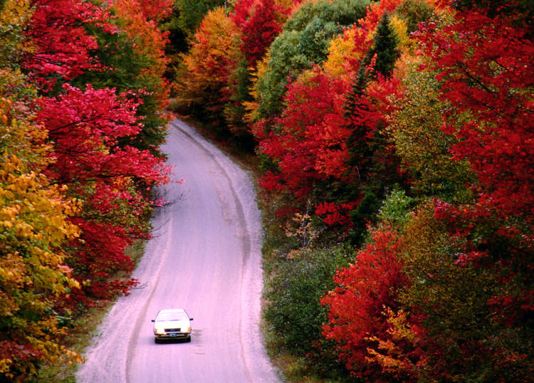 driving-through-spectacular-new-england-fall-foliage_cs