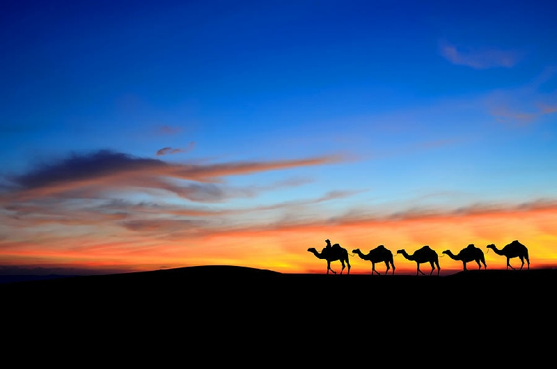 sunset-sunrise-camel-tour-morocco