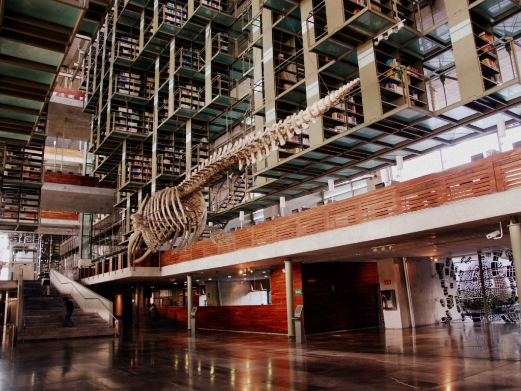 best-libraries-from-around-the-world-vasconcelos-library