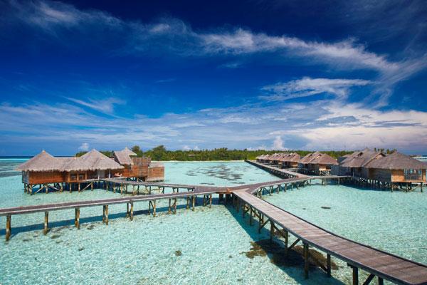 Tripadvisor 2015年全球酒店旅行者选择奖