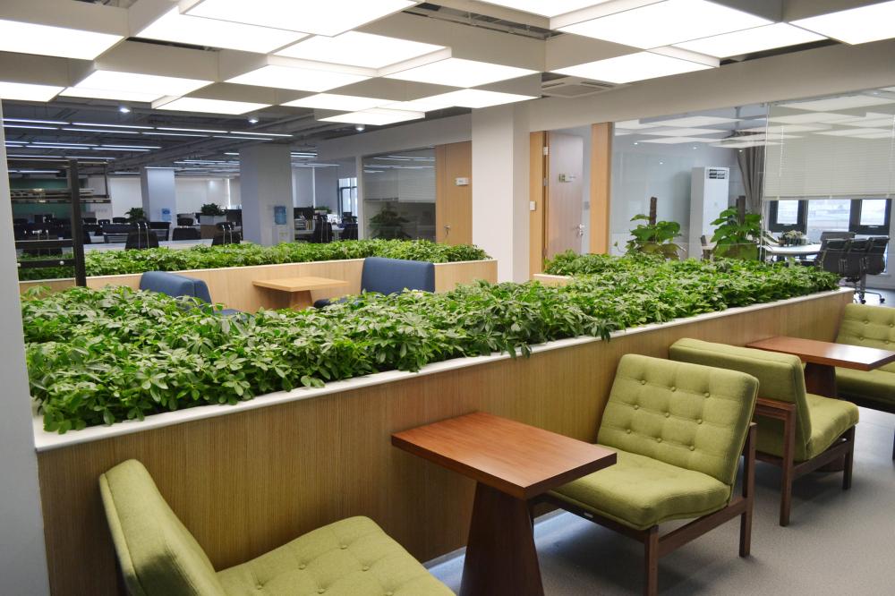 豌豆荚新办公空间 面试及接待区