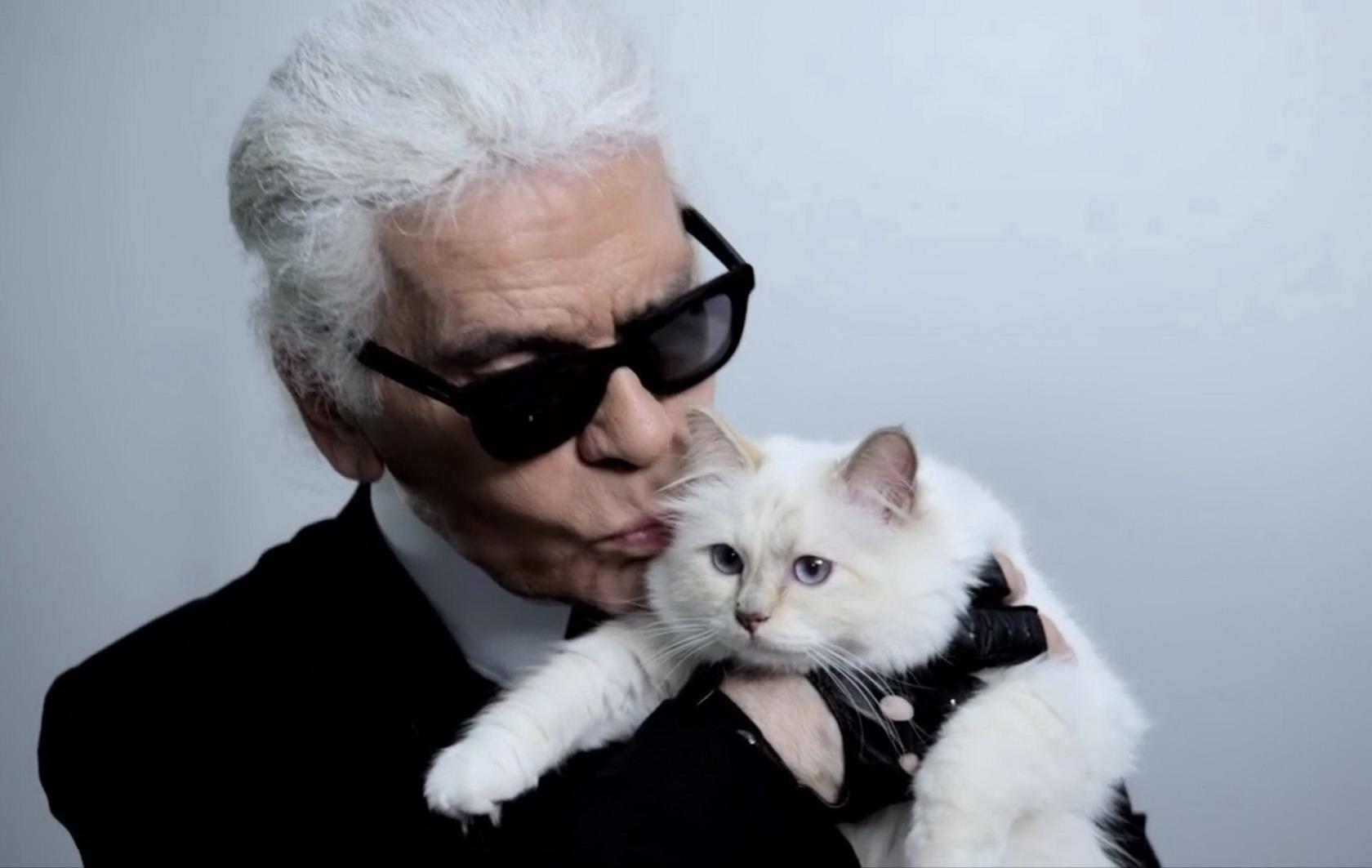 Karl Lagerfeld 爱猫引领宠物代言人热潮