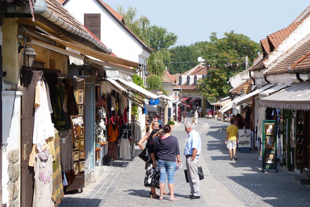 每天只需 4500元人民币,就能当上一个匈牙利小镇的副镇长
