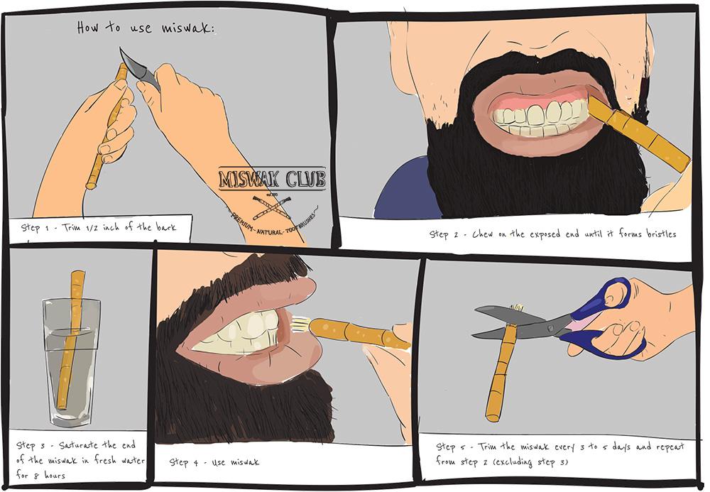Miswak: 像远古人类那样用树棍刷牙