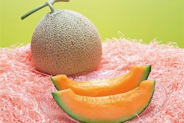 日本夕张甜瓜以 150万日元天价成交