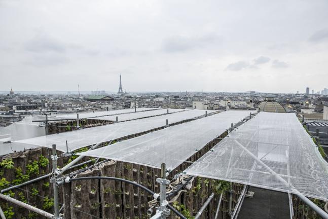 老佛爷百货打造空中花园,引领巴黎都市农业新风潮