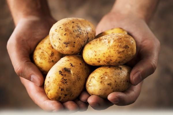 """最新研究成果戳破了""""高蛋白,低碳水化合物""""健康饮食法的神话"""