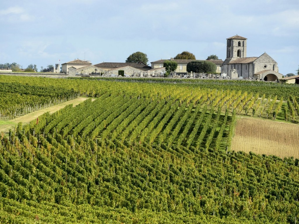 bordeaux-wine-is-world-famous-and-encompasses-all-wines-made-in-the-bordeaux-region-of-france-which-is-the-largest-wine-growing-region-in-france-bordeaux-vineyards-cover-al