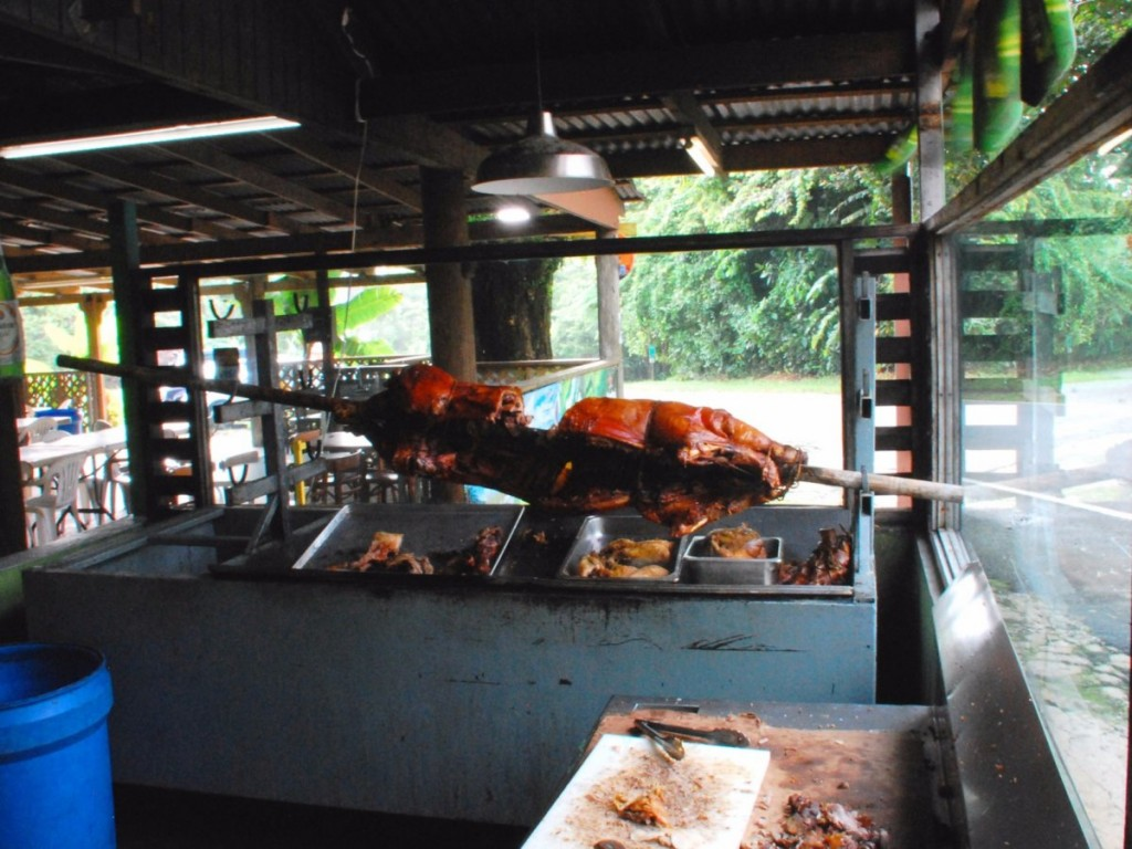 la-ruta-del-lechninpuerto-rico-is-literally-ahighway-lined-with-strip-mall-likeshacks-whilenot-exactly-scenic-it-just-might-be-hog-heaven-pork-highwayas-its-knownis-a-stret