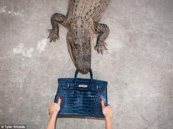 Jane Birkin 与爱马仕就鳄鱼皮风波达成和解