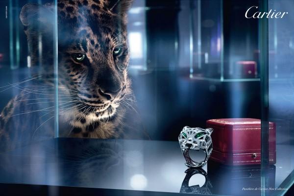 卡地亚史上首个当代高级珠宝公开展,10月31日在新加坡举行
