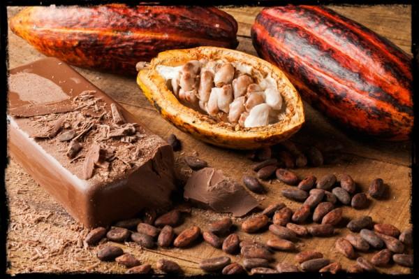 比利时新一代巧克力大师在颠覆中传承