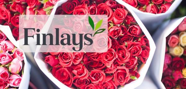 私募基金 Sun Captial Partners 收购英国园艺公司 Finlays Horticulture