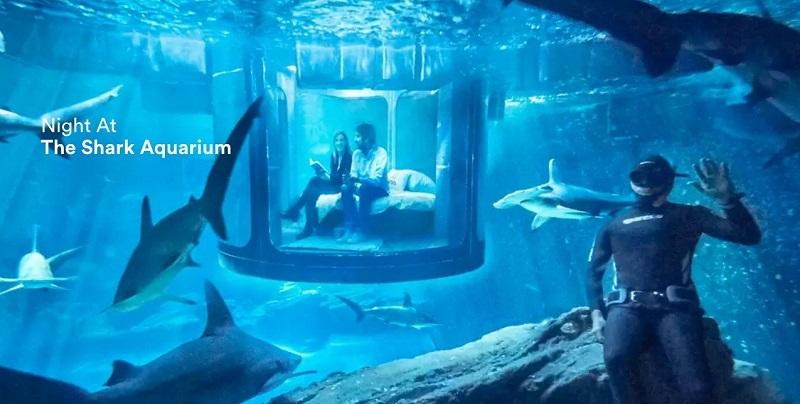 Airbnb-Shark-Tank-Bedroom