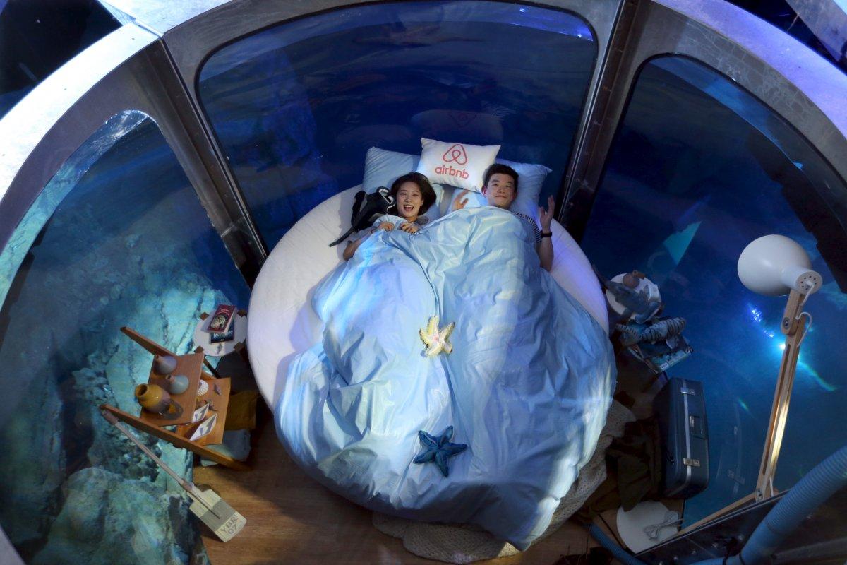 中国情侣入住 Airbnb 水底客房,与 35只鲨鱼共度良宵!