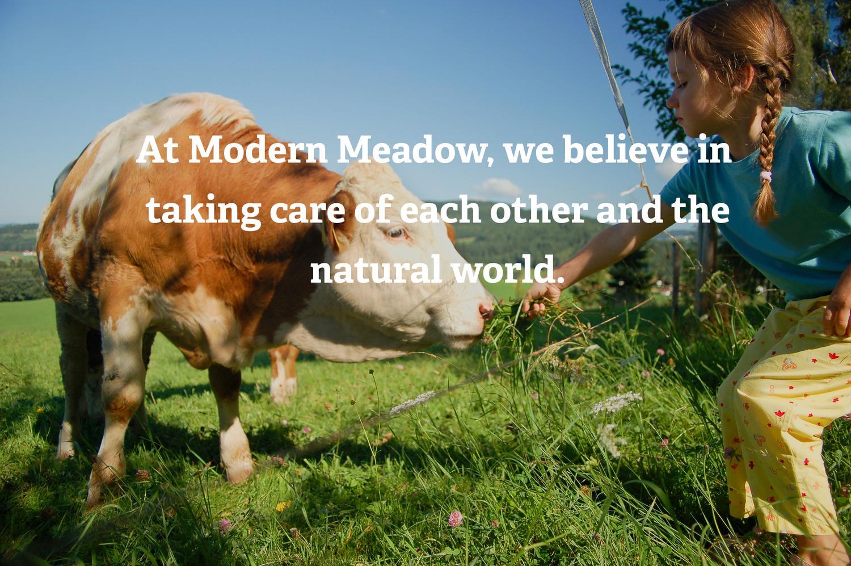 """不伤害动物的""""真皮""""就快能买到了!Modern Meadow 再融资4000万美元,推进商业化进程"""