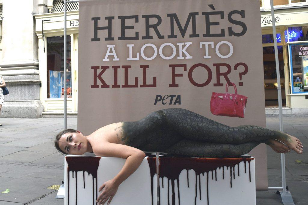Hermes-Demo-1