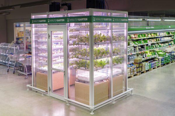在超市里开菜园!德国初创公司 Infarm在柏林麦德龙建设室内垂直农场