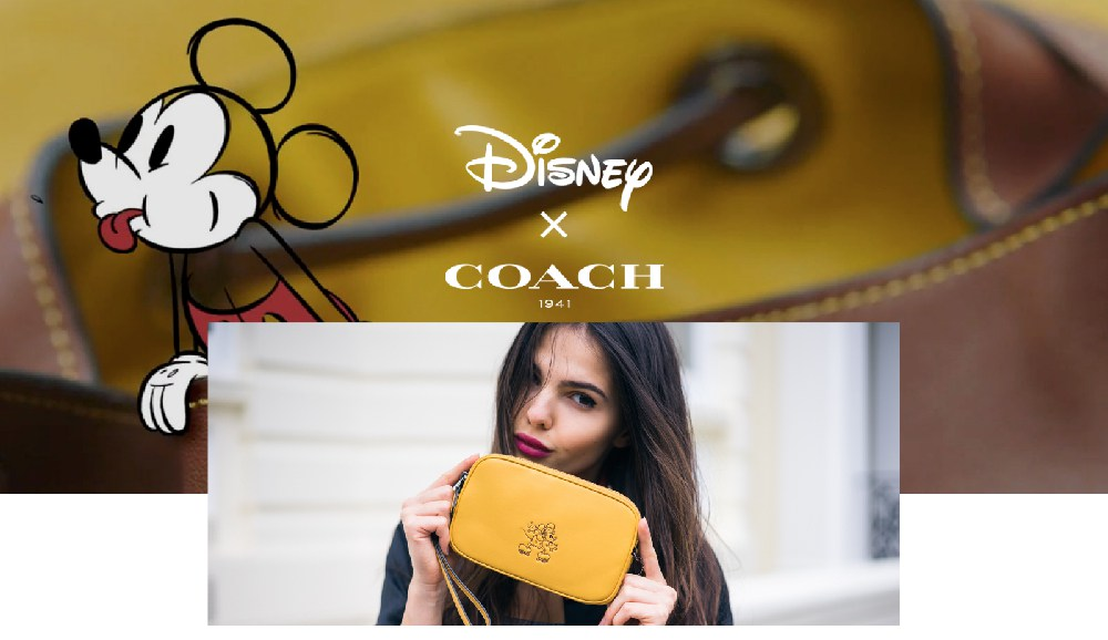 doina-ciobanu-coach-disney-collage-6