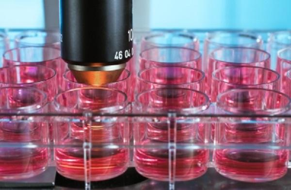 把人类的嗅觉和味觉变成具体数据:来自斯坦福孵化器的Aromyx