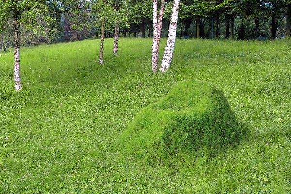 """既是家具,又是风景:从地里长出来的绿色""""扶手椅""""TERRA!"""