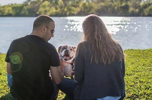 美国宠物护理服务平台 Rover完成4000万美元E轮融资