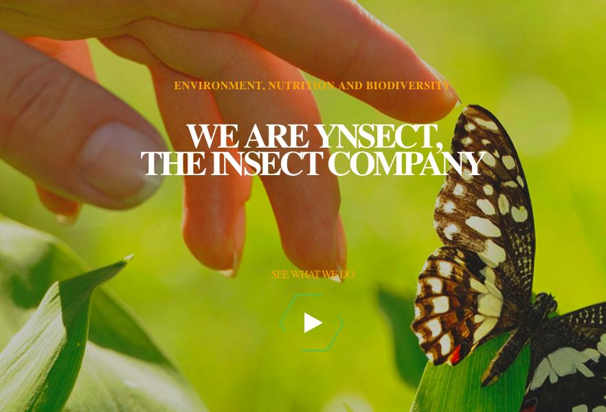 全球最大的昆虫蛋白研发机构,法国Ynsect公司完成1520万美元B轮融资