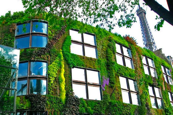 """为打造""""花园城市"""",巴黎政府通过法律鼓励全民参与创意绿化"""