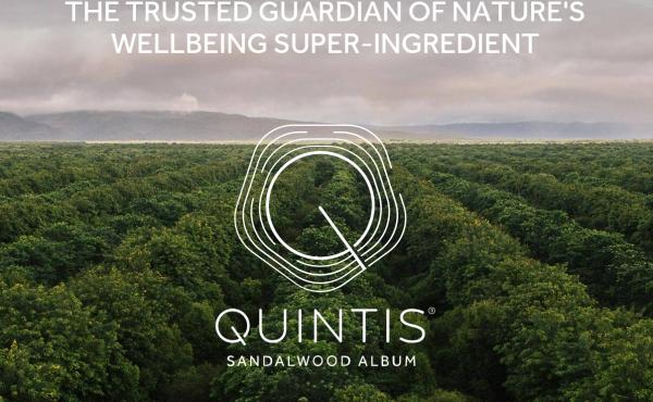 私募基金KKR领衔的财团将对澳洲檀香木种植集团Quintis发起收购