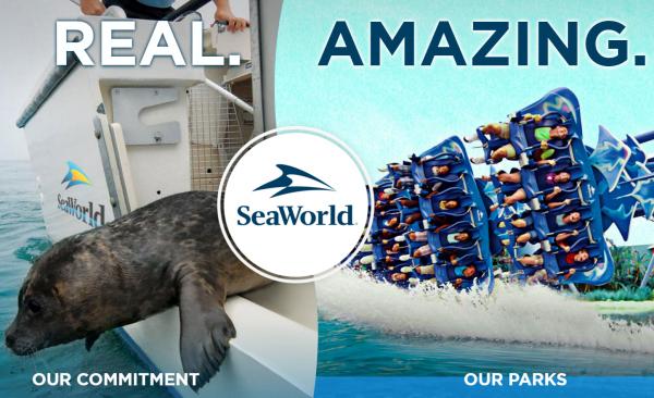 中国中弘卓业集团从黑石集团手中收购美国海洋公园 SeaWorld 21%股份