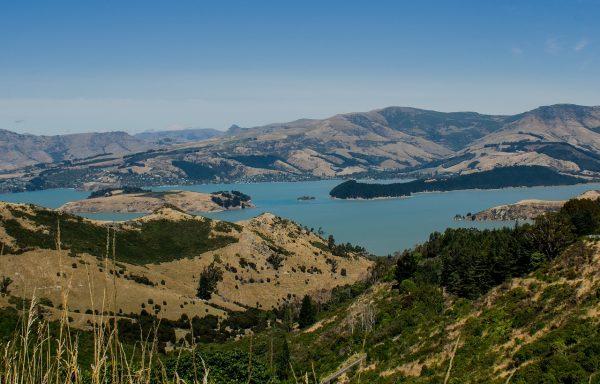 游客数量逼近全国总人口!新西兰酒店供给严重不足