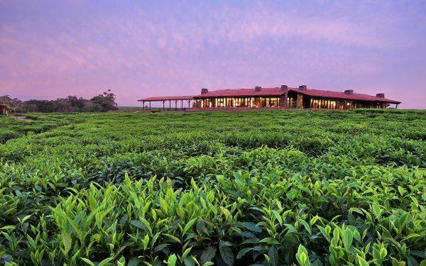 提供一生一次的体验!奢侈度假酒店 One&Only 宣布新增三个酒店品牌
