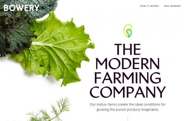 室内农场初创公司 Bowery 完成 2000万美元融资
