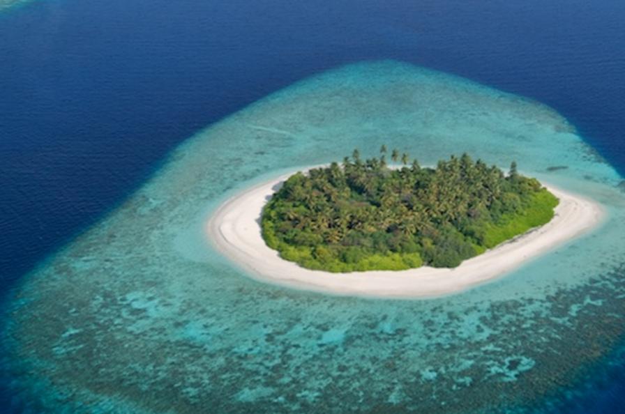 黑石集团或将出售马尔代夫水上飞机运营商 Trans Maldivian,中国宗申集团有望接手