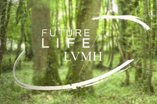 """奢侈品消费者越来越关注品牌的""""绿色""""形象,LVMH 宣布加大环保投入"""