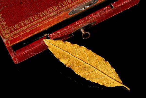 拿破仑加冕皇冠遗留的一片金叶子 11月在巴黎拍卖,预计成交价 10~15万欧元