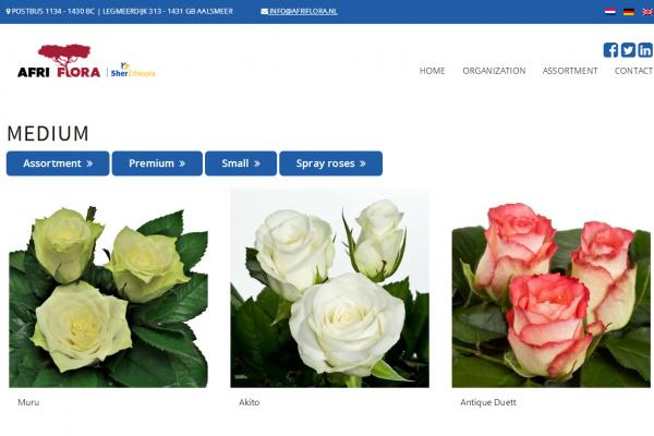 私募基金 Sun European Partners 收购全球最大玫瑰种植商 Afriflora 控制性股权