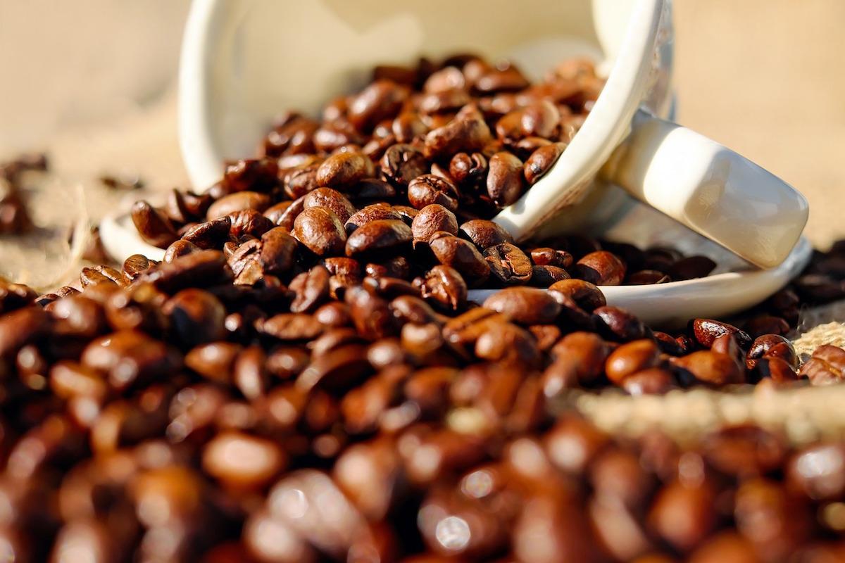 全球咖啡豆已开始供不应求,咖啡豆种植业面临三大难题亟待克服