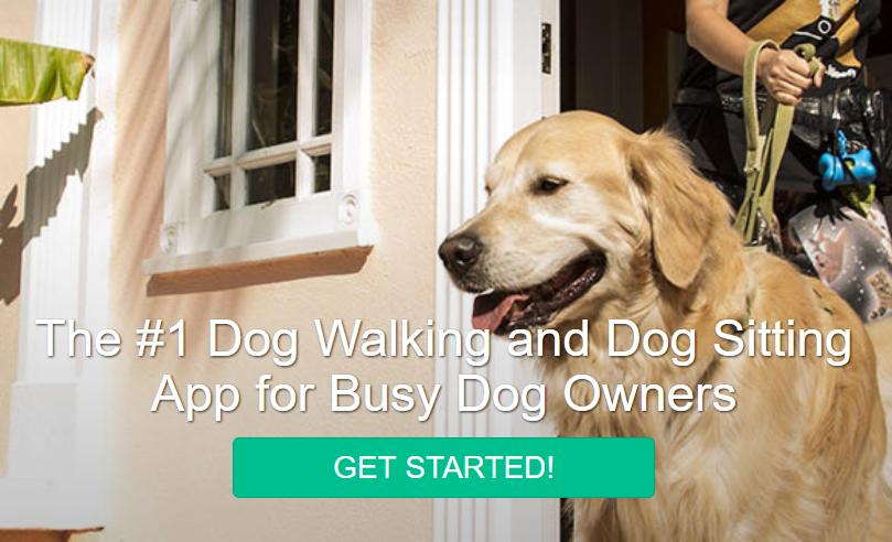 全美最大的遛狗养狗服务应用程序Wag! 获软银旗下基金3亿美元投资