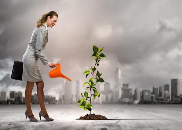 专注于投资女性创业者领导的环保和消费者健康技术公司,True Wealth Ventures 首支基金募资1910万美元